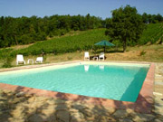 Swimming Pool of Podere Vignola Farm Holiday